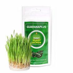 Guaranaplus Mladý zelený ječmen 100 kapslí