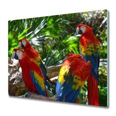 tulup.hu Üveg vágódeszka papagájok ara 60x52cm