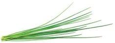 Click and Grow Smart Garden sadenica Pažitka