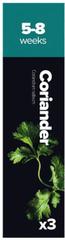 Plantui Coriander, 3 kapsule, koriander siaty