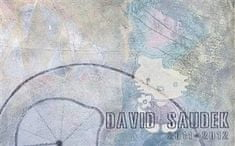 David Saudek 2011 - 2012