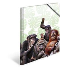 Herma mapa s preklopom i elastikom, A3, Majmun