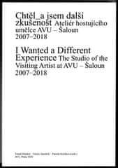 Chtěl_a jsem další zkušenost - Ateliér hostujícího umělce AVU. Šaloun 2007–2018