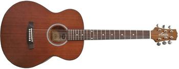 Jumbo gitary