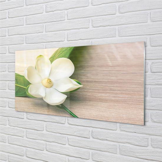 tulup.sk Nástenný panel biela magnólia
