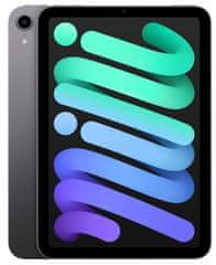 Apple iPad mini 2021, Wi-Fi, 256GB, Space Gray