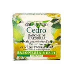 Nesti Dante přírodní mýdlo Cedro 100g