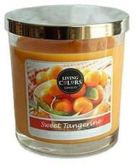 Candle-lite Living Colors Sweet Tangerine 141 g