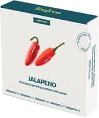 Chilli papričky Jalapeno (kapsle se semeny, 4 ks)